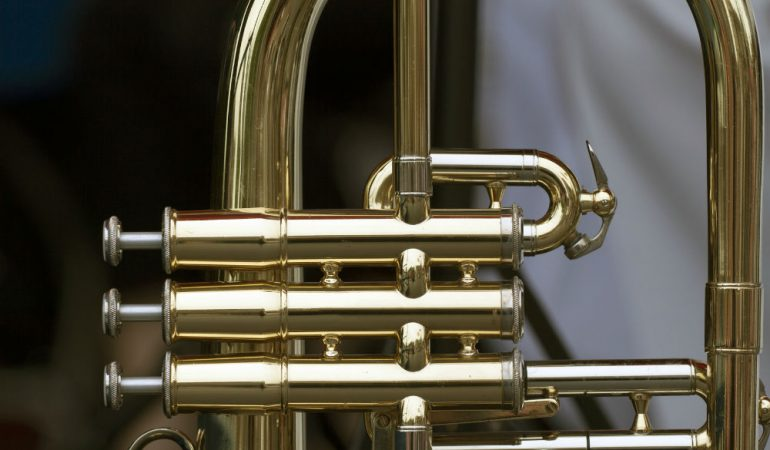 Roy Benson RBPT101G BB Pocket Trumpet Review